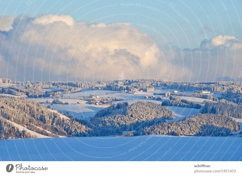 in Watte gepackt Umwelt Natur Landschaft Wolken Sonnenlicht Winter Klima Schönes Wetter Eis Frost Schnee Wald Hügel Berge u. Gebirge kalt Schneelandschaft
