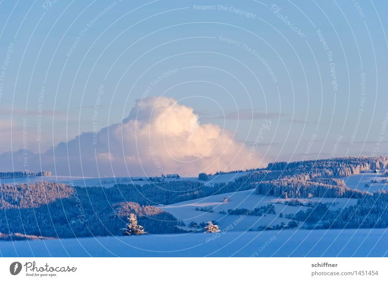 Sahnehaufen Natur Pflanze Baum Landschaft Wolken Winter Wald kalt Berge u. Gebirge Umwelt Schnee Eis Klima Schönes Wetter Hügel Frost