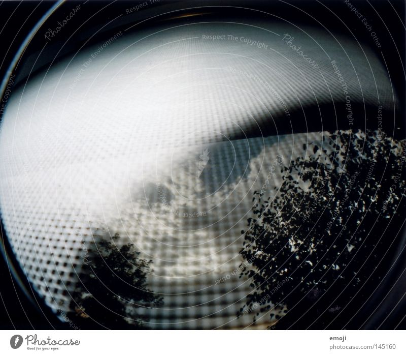 fascination analog Fischauge Fenster Baum Sträucher Wolken Himmel Gitter Insektenschutz seltsam Unfall Lomografie Scan trees clouds sky Netz Verzerrung strange