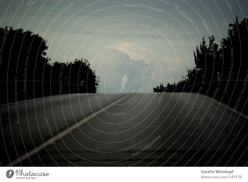 A long way home. Kuppeldach Gipfel Hügel Baum Sträucher Straßenverkehr Verkehr Mittelstreifen Streifen Asphalt Wolken schlechtes Wetter Abend Abendsonne Heimweh