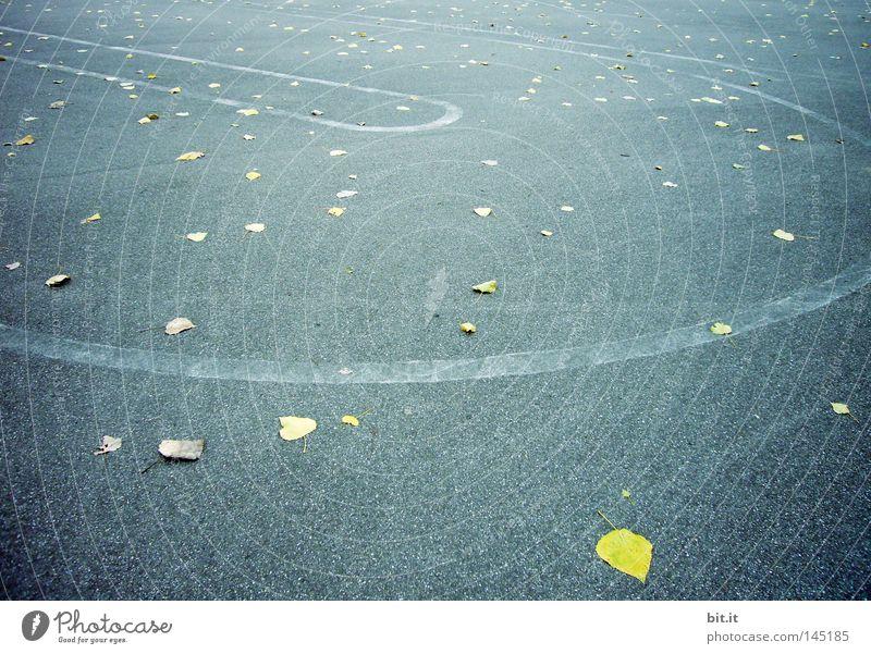 BLÄTTERWIRBEL blau Blatt gelb Straße Herbst Bewegung Linie Hintergrundbild Platz Asphalt Verkehrswege durcheinander Herbstlaub Rennbahn herbstlich