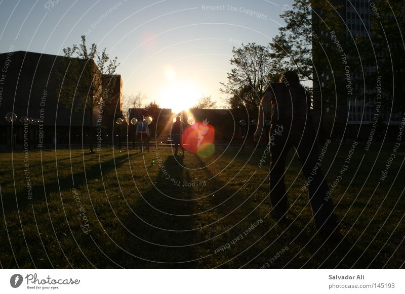 Sunset-Pils-Kubb Runde Zwo blau grün Sommer Erholung Spielen Gefühle Freizeit & Hobby elegant Aktion Pause Rasen Student Sportrasen werfen edel Schweden