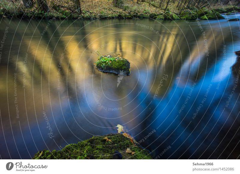 Sonnenfarben im Fluss bei langer Belichtung Umwelt Natur Landschaft Pflanze Erde Sand Wasser Himmel Wolkenloser Himmel Sonnenlicht Herbst Schönes Wetter Baum