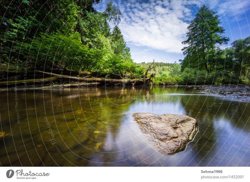 Steine im Fluss bei langer Belichtung und blauen Himmel Natur Pflanze Sommer Wasser Sonne Baum Landschaft Wolken Strand Herbst Gefühle Gras Stimmung Sand Erde
