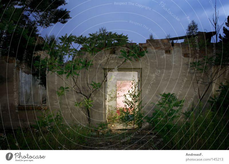 wohnen im grünen Haus Einsamkeit Mauer Gebäude Angst Wohnung Tür leer Elektrizität Häusliches Leben Vergänglichkeit wild gruselig verfallen Eingang