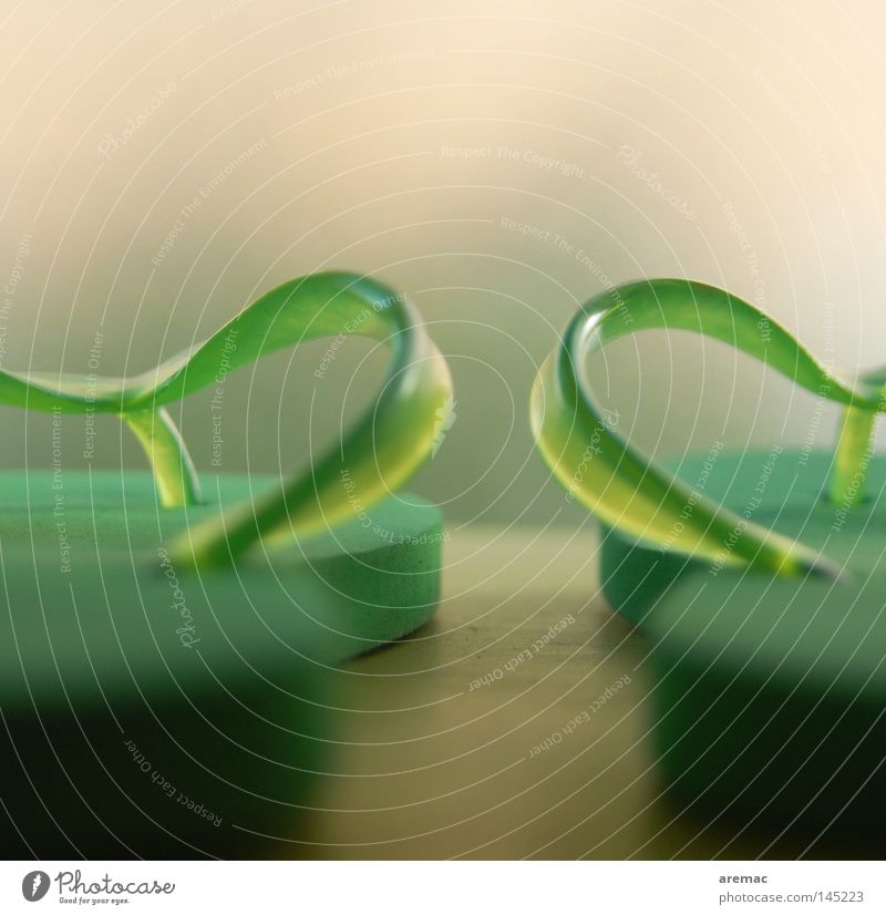 Adiletten grün Schwimmen & Baden Schuhe Freizeit & Hobby Wellness Kunststoff Statue Makroaufnahme Flipflops Schlappen Badelatschen