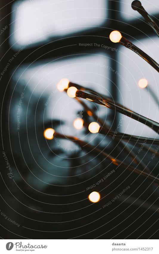 warten Weihnachten & Advent schön Freude Wärme Leben Innenarchitektur Stil Lifestyle Feste & Feiern Freiheit Lampe Stimmung Design wild Freizeit & Hobby