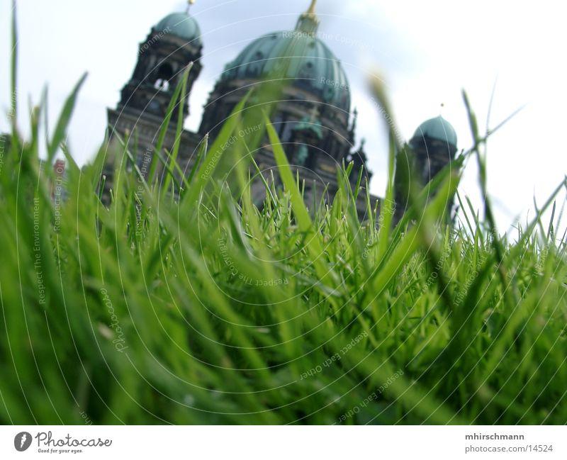 gebäude behind grashalm Gras Wiese Gebäude Sommer grün Architektur Sonne Himmel Turm