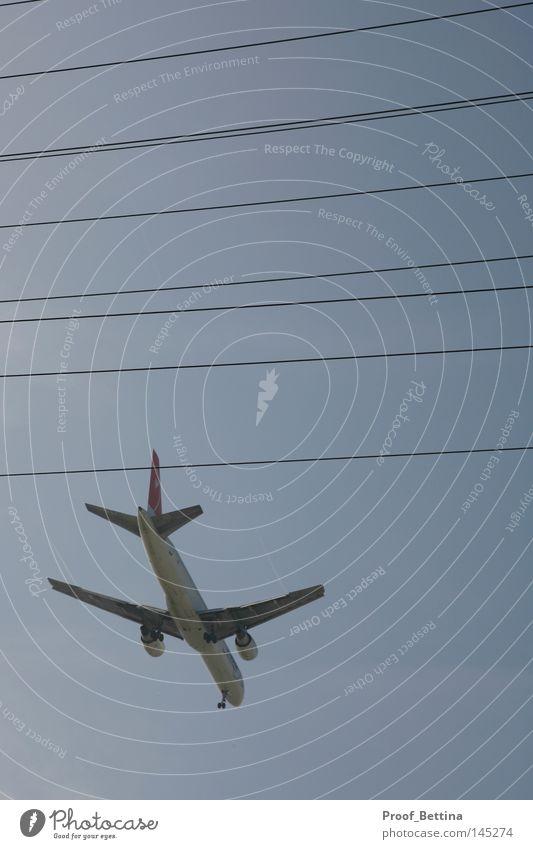 Airplane Flugzeug Verkehrsmittel Kohlendioxid Schadstoff Luftverkehr Los Angeles Amerika Flughafen Technik & Technologie Flugzeuglandung Himmel blau Kabel USA