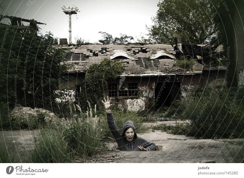 unkraut vergeht nicht Gelände Bauernhof Gebäude Haus Baracke Stall schäbig schädlich verfallen Einsamkeit kaputt Loch Mensch Lebewesen Frau sprechen schreien