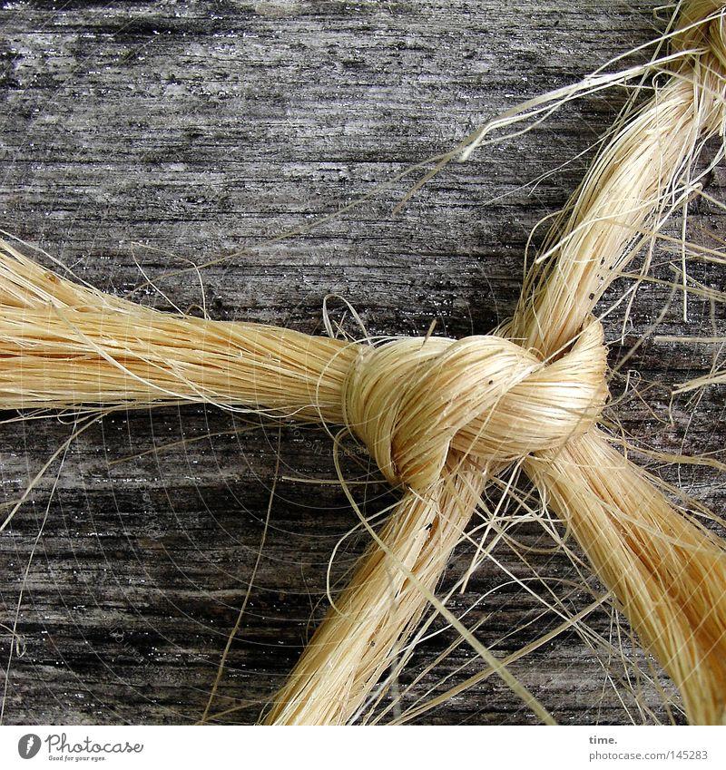 Blondie Seil Natur Hanf Holz Schnur Knoten festhalten Faser verbinden Material Sisal Maserung geknotet Verbindung Farbfoto Gedeckte Farben Nahaufnahme