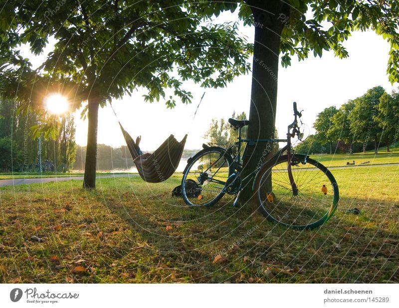 Feierabend Baum Ferien & Urlaub & Reisen Sonne Sommer Freude Erholung Wiese Freiheit Fahrrad Freizeit & Hobby frei Pause Sonnenstrahlen Stress Abenddämmerung