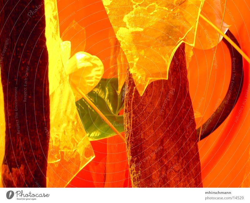 boxenpflanze Pflanze gelb Blatt grün Nürnberg Ausstellung Messe Farbe Baumstamm orange Statue Lautsprecher Garten