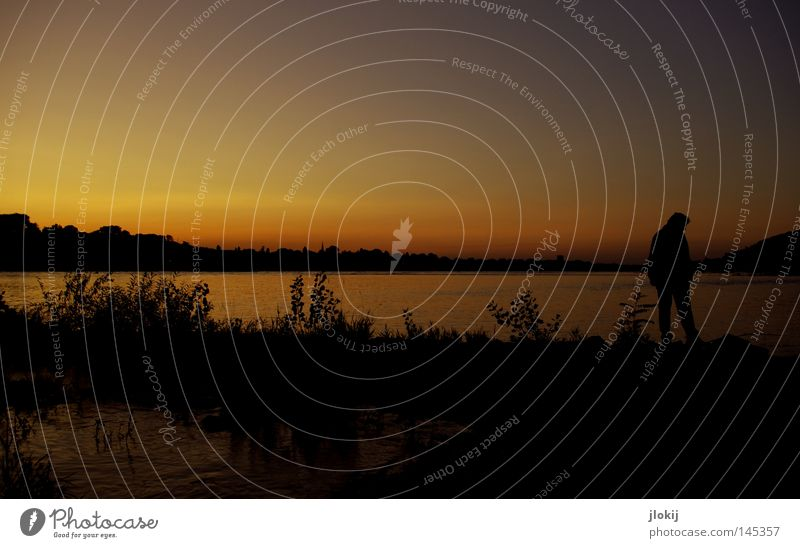 Abendspaziergang Mann Natur Wasser Himmel Baum ruhig Wolken Tier Wald Herbst Wellen Zeit Horizont Pause Fluss Sträucher