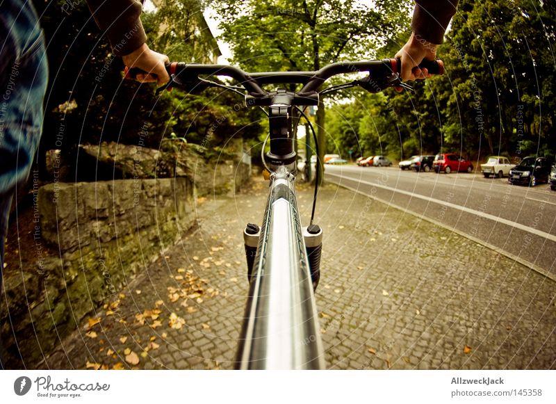 Hoch zu Ross Fahrrad Straße Bürgersteig Fußweg Egoperspektive fahren Bewegung umweltfreundlich Ausflug Ferien & Urlaub & Reisen Fahrradtour strampeln Gesundheit