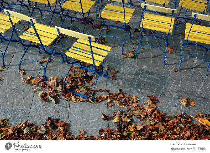 open air Blatt gelb Farbe Herbst grau Stimmung braun Pause Stuhl Bildung Verkehrswege