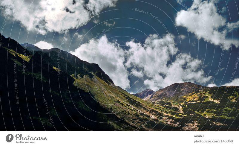Baumgrenze Himmel Natur Pflanze Landschaft Wolken Ferne kalt Berge u. Gebirge Umwelt Wand Stein oben Horizont Wetter Luft Idylle