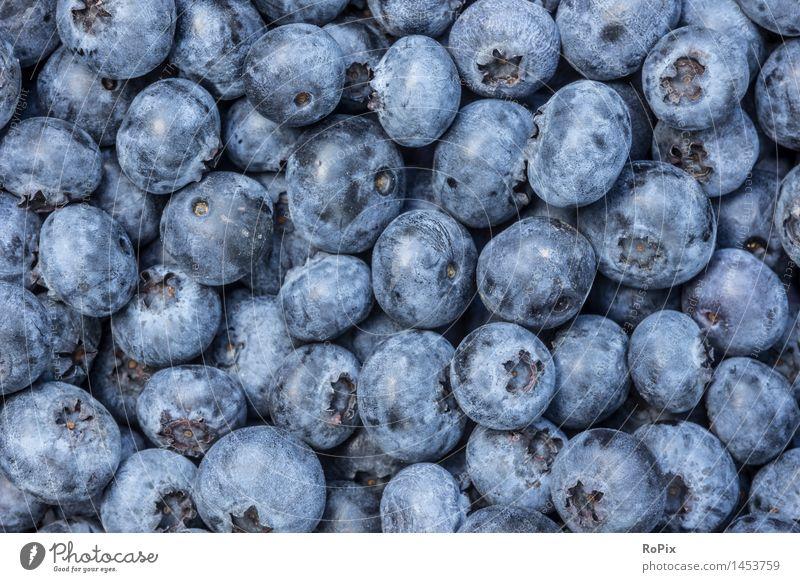 blueberries Lebensmittel Frucht Dessert Blaubeeren Heidelbeere heidelbeeren Ernährung Bioprodukte Vegetarische Ernährung Diät Fingerfood Gartenarbeit Küche