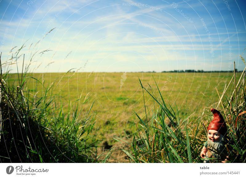 Horst Himmel blau grün weiß Sommer Wolken Wiese Gefühle Gras Deutschland Horizont Garten Gastronomie Schrebergarten Zwerg Klischee