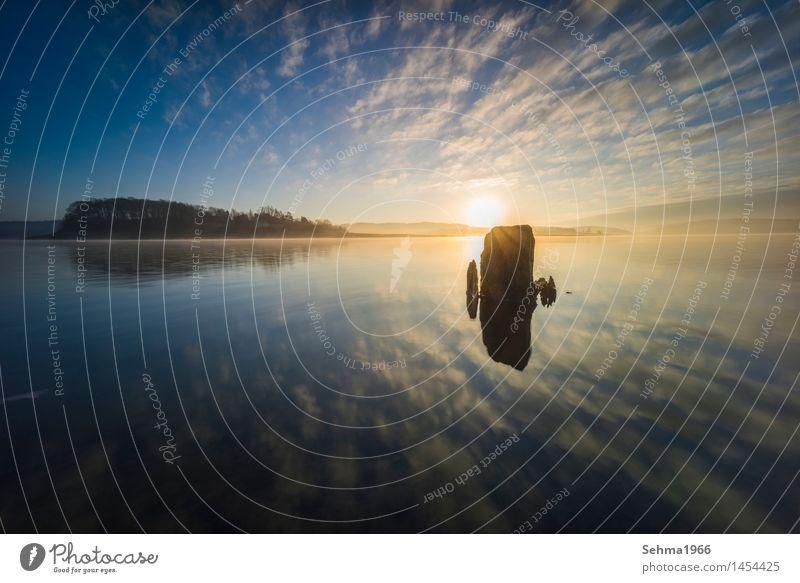 Sonnenaufgang im Nebel und Spiegelung der Wolken im See schön ruhig Natur Wasser Horizont Herbst Baum Stein blau gelb rot Romantik Tod Beginn Baumstumpf Wurzeln