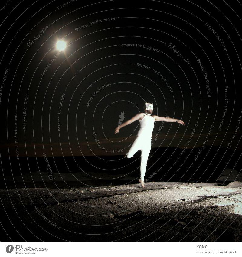 katzensee schön Freude Lampe springen Bewegung Musik Katze Tanzen Stern Bekleidung ästhetisch Maske außergewöhnlich Dynamik Mond leicht