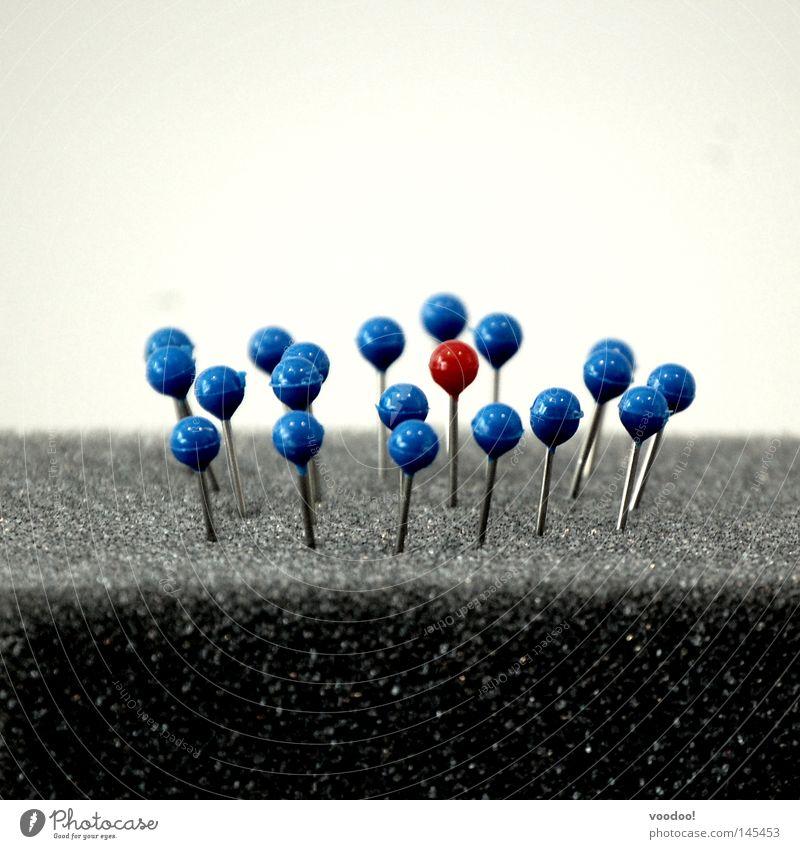 Integration abgeschlossen blau rot Einsamkeit Menschengruppe außergewöhnlich Erfolg rund Kommunizieren Gesellschaft (Soziologie) verstecken Anhäufung fremd