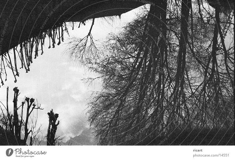 watershad(ow)... ;)) Spiegel Himmel black white Strukturen & Formen Schatten Wasser sky