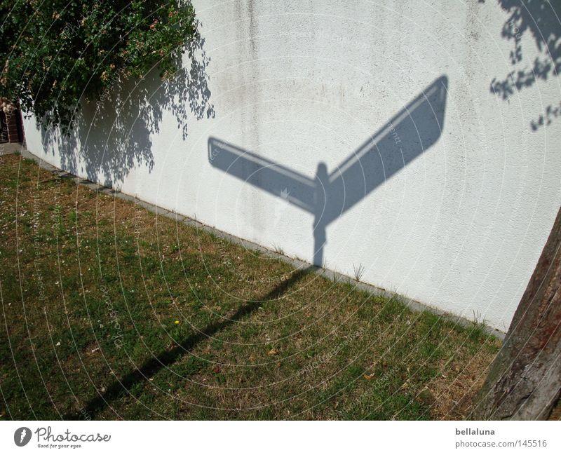 Schattenweiser Erde Herbst Wetter Gras Sträucher Mauer Wand dünn grün Gefühle Trauer Sehnsucht Richtung Orientierung Baumstamm Wegweiser Rasen