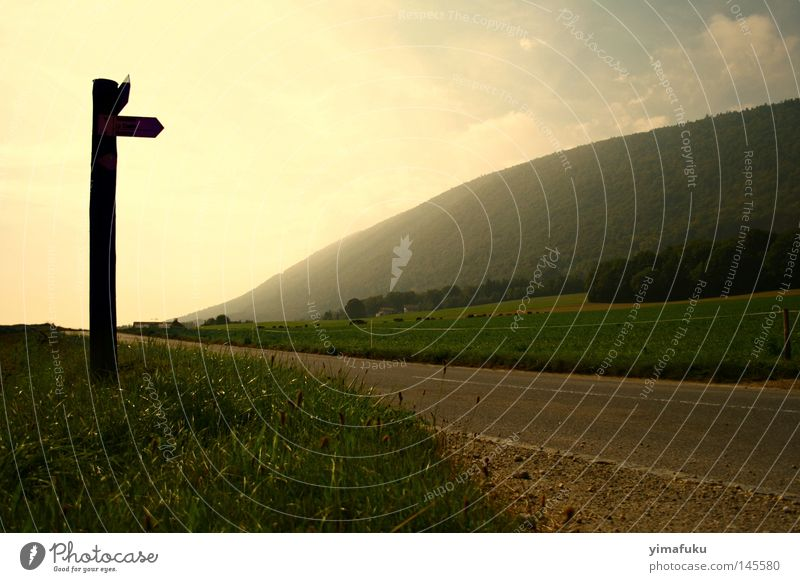 Das Ende der Welt Straße Natur Berge u. Gebirge Gras Schweiz Nebel Lichtquelle Andeutung Neuenburg Nirgendwo