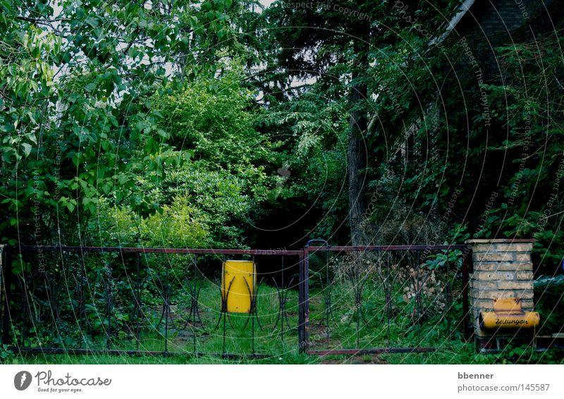 Das letzte Haus in der Strasse Natur Baum grün dunkel Wand Gras Garten Gebäude Sträucher geheimnisvoll Tor verfallen Verfall Rost schäbig