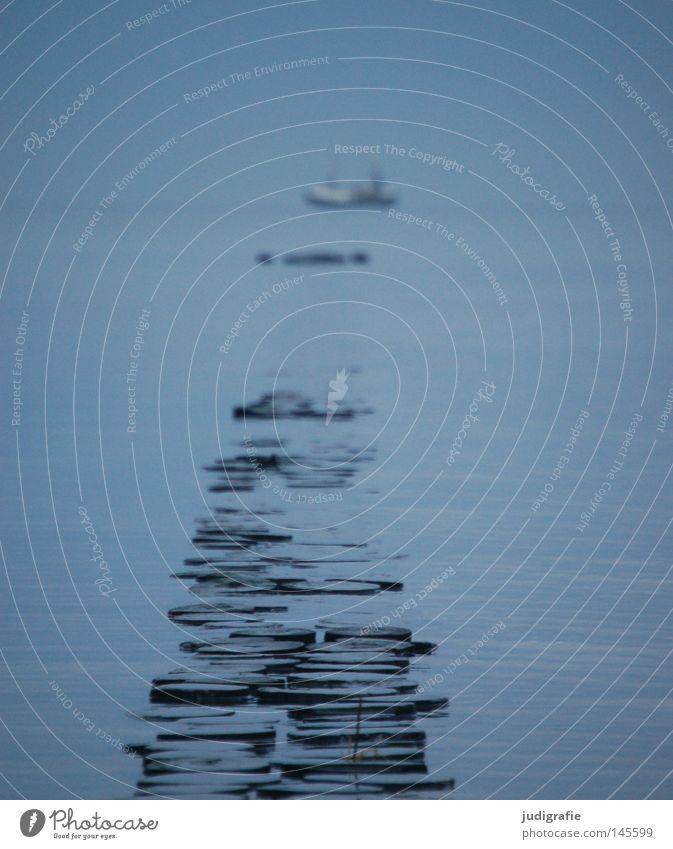 Junge, komm bald wieder … blau See Küste Ostsee Meer Himmel Kapitän Seemann Matrosen Buhne Holzpfahl Nebel Dunst kalt Winter Wasserfahrzeug Schifffahrt