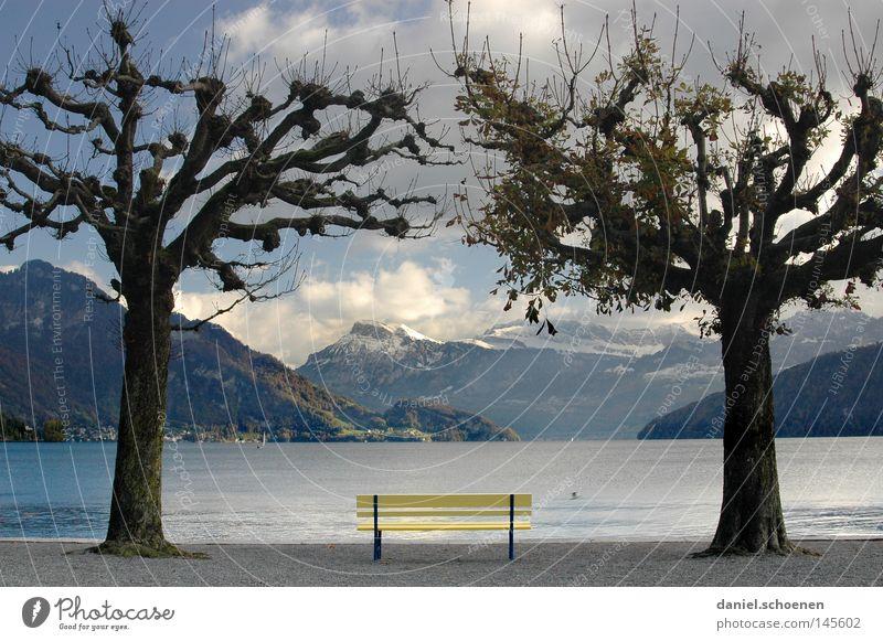 Herbstbank Wasser Himmel Baum blau Ferien & Urlaub & Reisen ruhig Blatt Wolken Einsamkeit gelb Berge u. Gebirge grau See Bank Aussicht