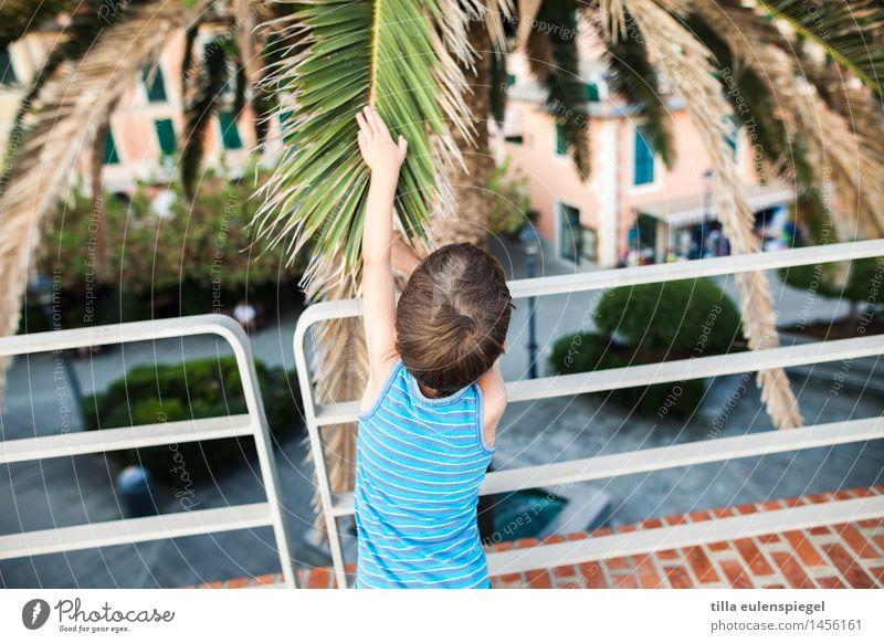 Einmal streicheln, bitte! Ferien & Urlaub & Reisen Tourismus Ausflug Sommerurlaub maskulin Kind Kindheit 1 Mensch 3-8 Jahre Baum Blatt berühren Neugier blau