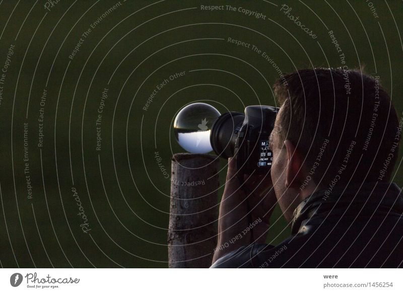 Durch die Glaskugel Natur Pflanze Baum Landschaft ästhetisch authentisch Kreativität Hütte Nachthimmel Stall Sternschnuppe Astronomie Sternbild Milchstrasse