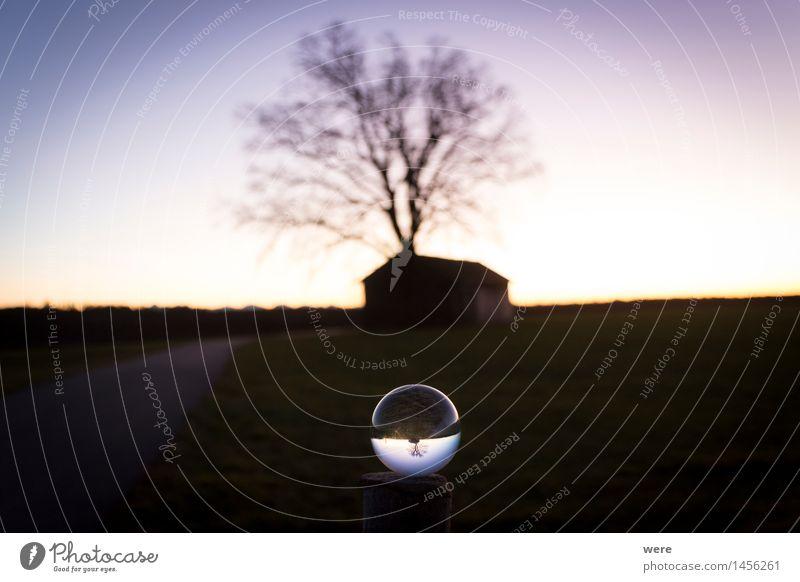Durch die Glaskugel 2 Natur Landschaft Pflanze Nachthimmel Baum Hütte Observatorium Stimmung Astronaut Astronomie Himmel Milchstrasse Raumflug Stall Sternbild