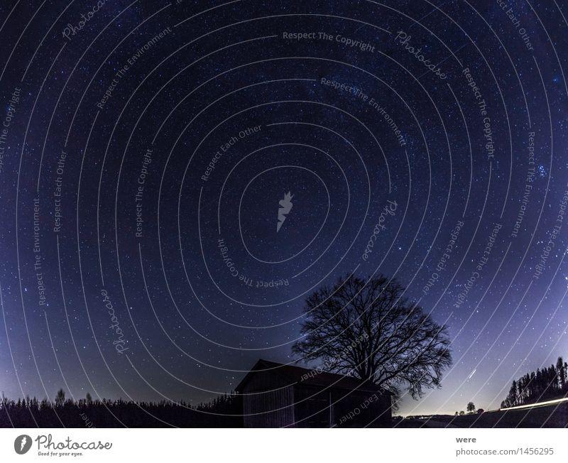 Wessobrunner Sternenhimmel Natur Pflanze Nachthimmel Baum Hütte Observatorium Blick gigantisch glänzend Unendlichkeit Romantik Wunsch Astronaut Astronomie