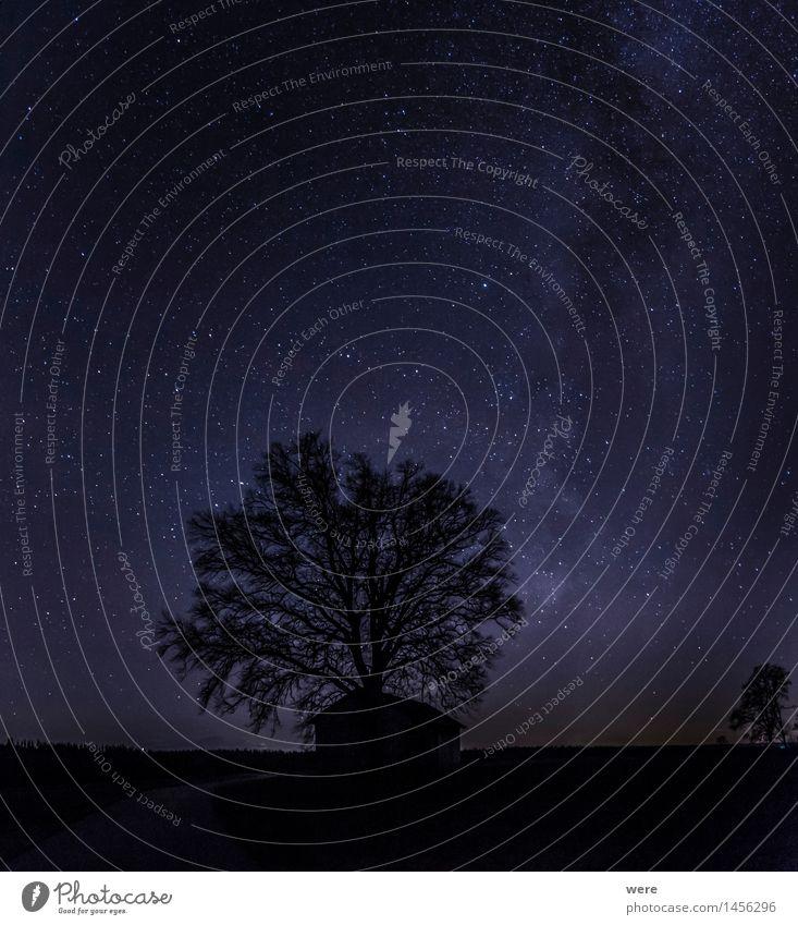 Nachthimmel Natur Pflanze Himmel Wolkenloser Himmel Stern Horizont Baum Hütte Observatorium gigantisch Unendlichkeit Gefühle Stimmung Freude Glück Zufriedenheit