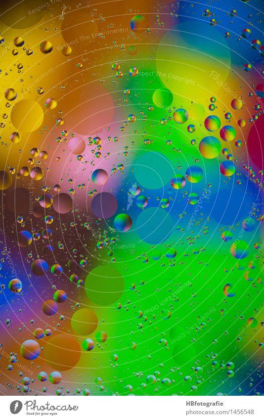 grease drops Wasser Farbstoff Kunst Design träumen Kreativität Wassertropfen rund Tropfen Wellness exotisch Inspiration feucht trüb Sinnesorgane Farbenspiel