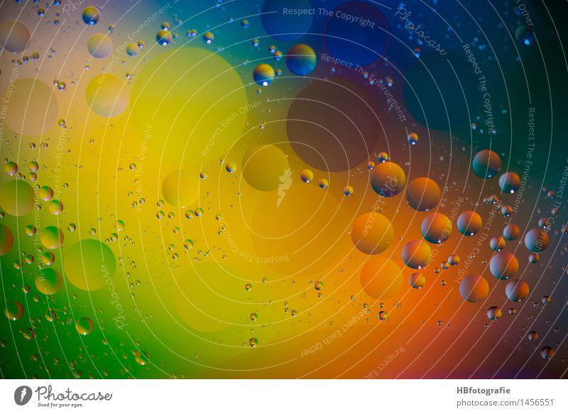 graese drops Farbe Wasser Farbstoff Stil Kunst Design träumen Glas verrückt Kreativität Wassertropfen Kreis Idee rund Tropfen Wellness