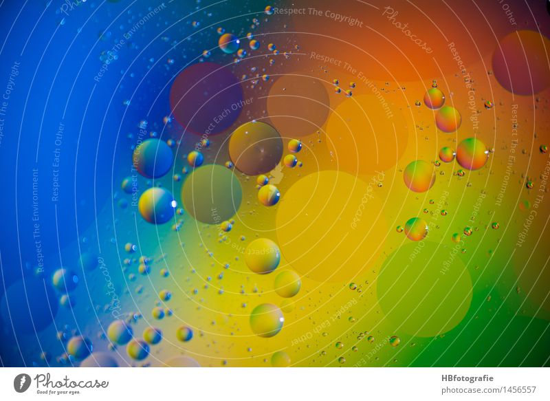 grease drops Stil Design exotisch Meditation Kunst Kunstwerk rund verrückt mehrfarbig Idee Inspiration Kreativität träumen Wellness Fettauge feucht Tropfen