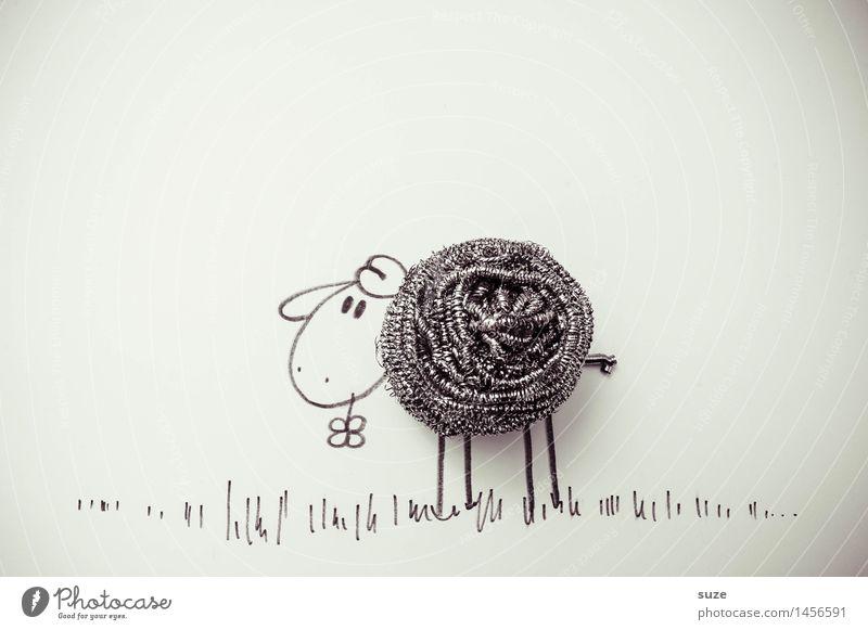 *3.600* Sag mir was Schmutziges! weiß Tier Freude lustig grau außergewöhnlich Metall Kreativität einzigartig Idee niedlich Grafik u. Illustration Sauberkeit