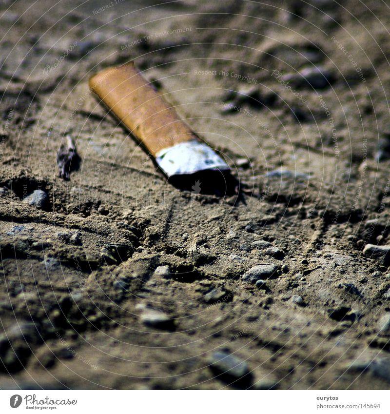 meine Letzte !!! Tabak Staub Makroaufnahme treten ausgedrückt weiß Nikotin Rauschmittel Nahaufnahme Zigarrette Zigarette Brandasche Bodenbelag Rauchen dreckig