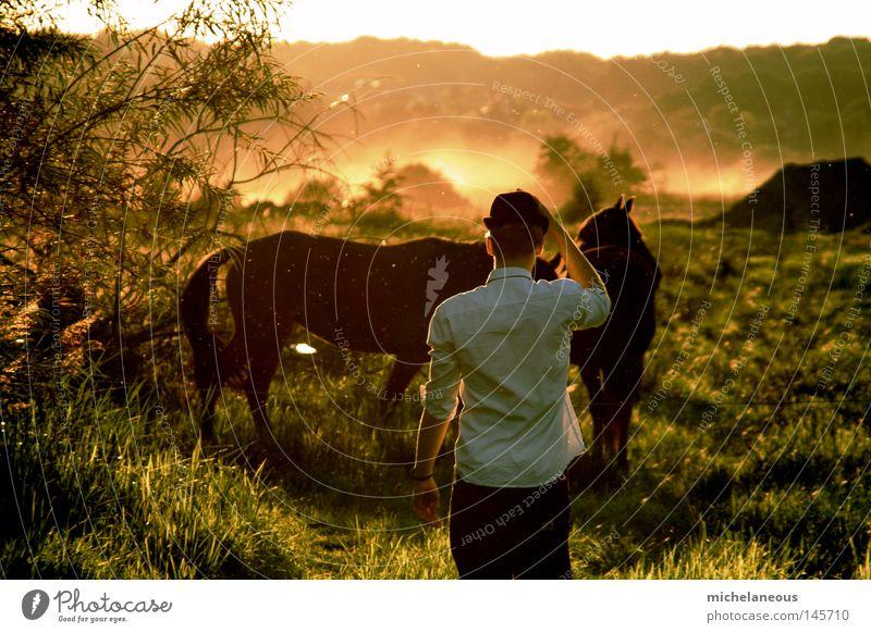 wenn heutzutage die erde brennt... Himmel Mann weiß grün Baum rot Sonne Ferne Herbst Wiese orange Horizont Brand Feuer Pferd Sehnsucht