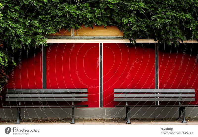 Bankenkrise Sitzgelegenheit rot Muster Efeu grün Blatt Romantik Streifen frontal 2 Zusammensein leer Einsamkeit Holzbank ruhig Frieden Erholung Verkehrswege