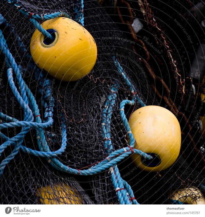 kein Fisch Meer Sommer Freude Ferien & Urlaub & Reisen Ernährung gelb Erholung träumen See Lebensmittel Seil Netzwerk Hafen fangen