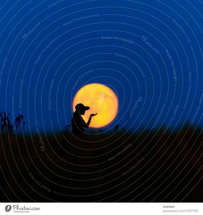 Harmonie im Vollmond Frau Natur Hand Einsamkeit Freude Erwachsene Glück Freiheit Stimmung Zufriedenheit Feld Idylle Arme Lebensfreude beobachten einzigartig