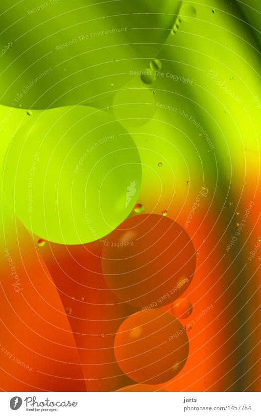 rundum Wasser außergewöhnlich frisch modern grün rot Kreativität Kreis Blase Farbfoto mehrfarbig Studioaufnahme Nahaufnahme Detailaufnahme Experiment