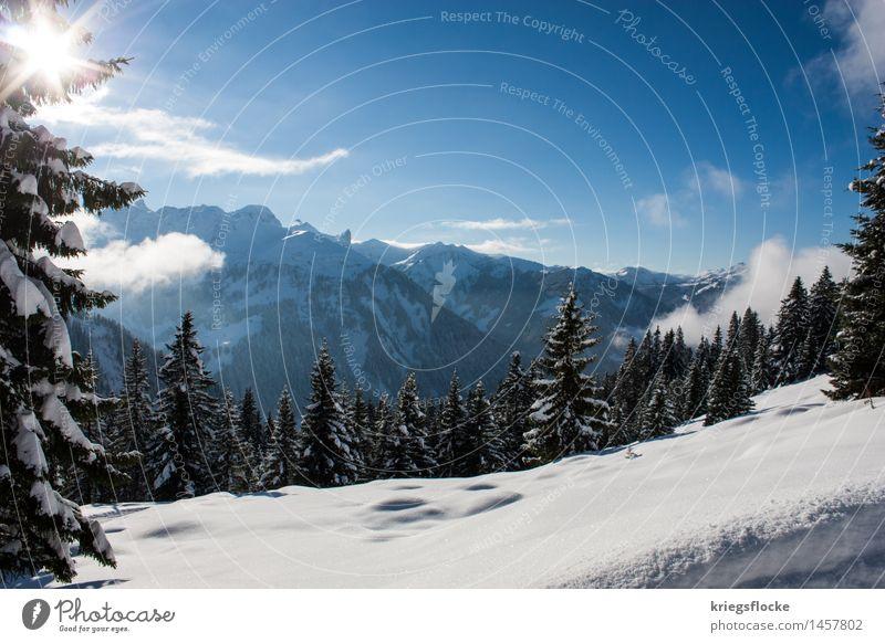 Winter Wonderland Tourismus Ausflug Abenteuer Schnee Winterurlaub Berge u. Gebirge wandern Natur Schönes Wetter Baum Wald Alpen Gipfel Schneebedeckte Gipfel