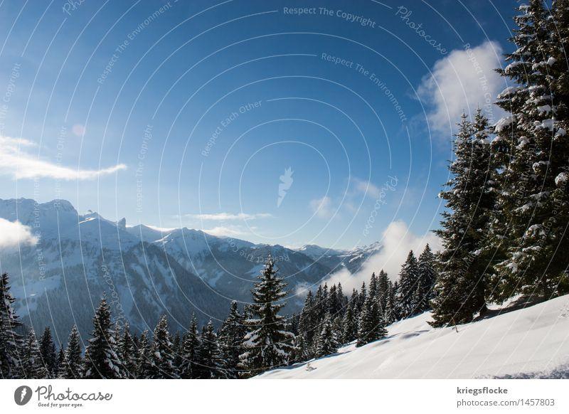 Winter Wonderland II Natur Ferien & Urlaub & Reisen Baum Berge u. Gebirge Umwelt Schnee Freiheit Eis Freizeit & Hobby wandern Idylle Ausflug Schönes Wetter