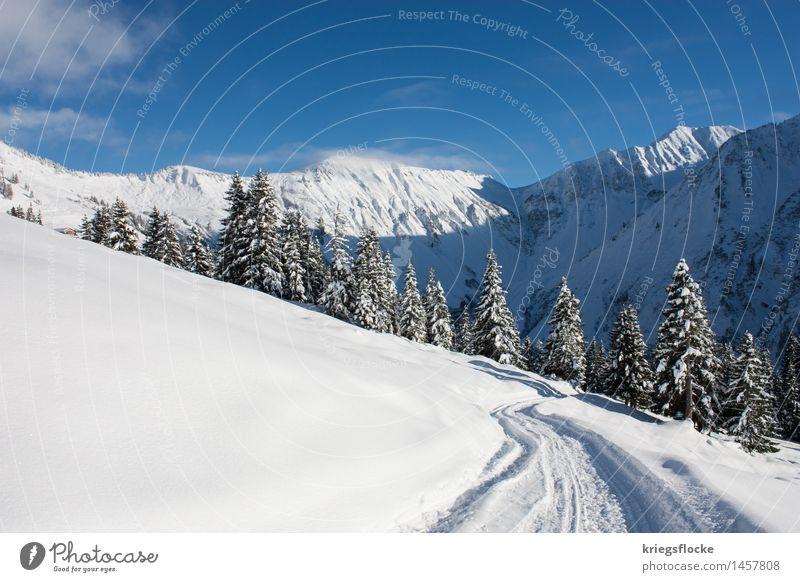 Winter Wonderland III Himmel Natur Ferien & Urlaub & Reisen weiß Landschaft Einsamkeit ruhig Berge u. Gebirge kalt Wege & Pfade Schnee Freiheit Felsen wandern